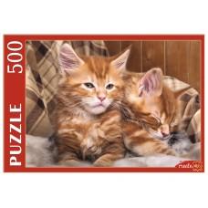 Пазлы 500 эл. Котята Мейн-Куна