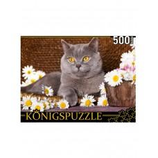 Пазлы 500 эл. Британский кот и ромашки