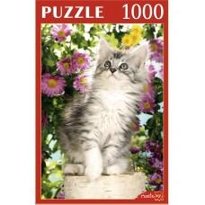 Пазлы 1000 эл. Любопытный котенок