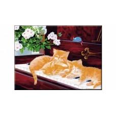 Раскраска по номерам. формат а3. рыжие котята